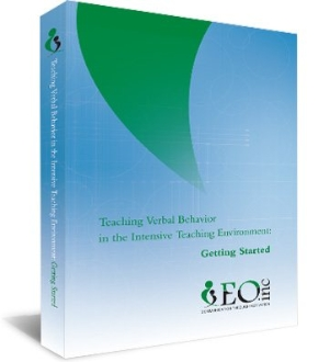 Teaching VB in Intensive Teaching Environment: Getting Started